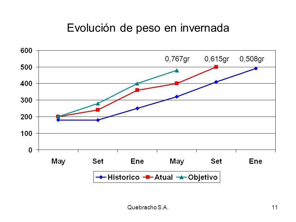 Quebracho S.A.11 Evolución de peso en invernada 0,508gr0,615gr0,767gr