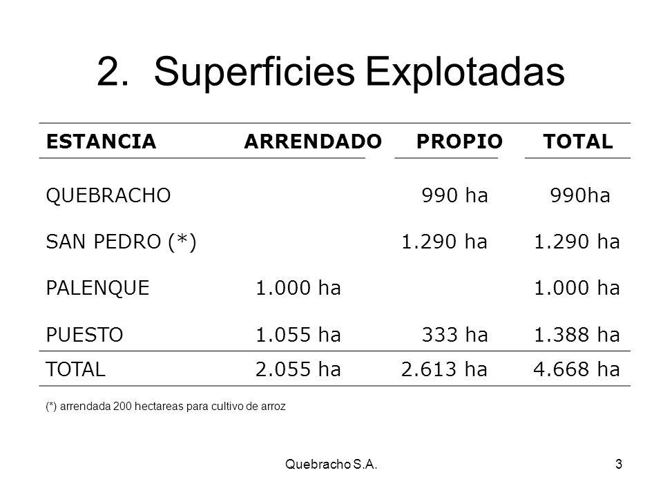 Quebracho S.A.3 2.