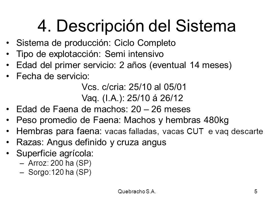 Quebracho S.A.5 4.