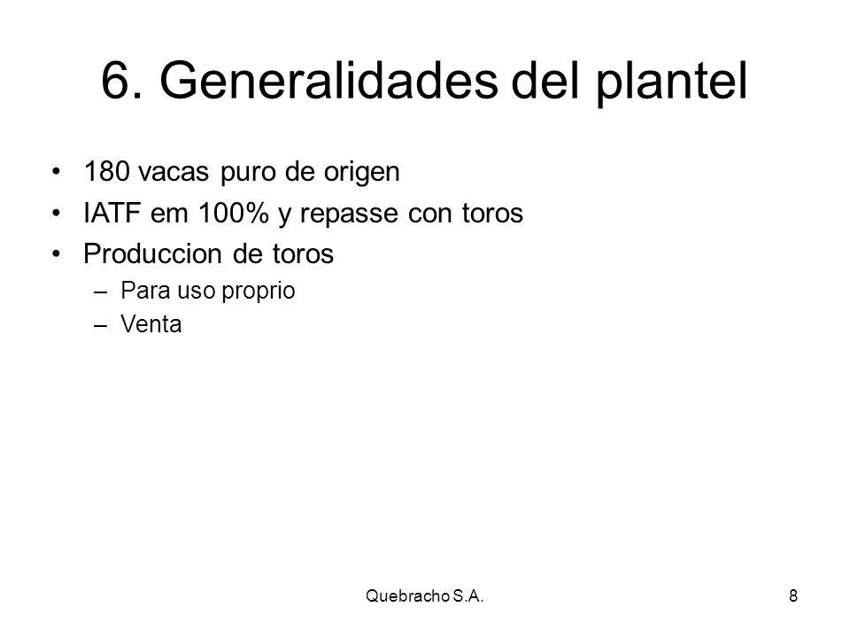 Quebracho S.A.8 6.