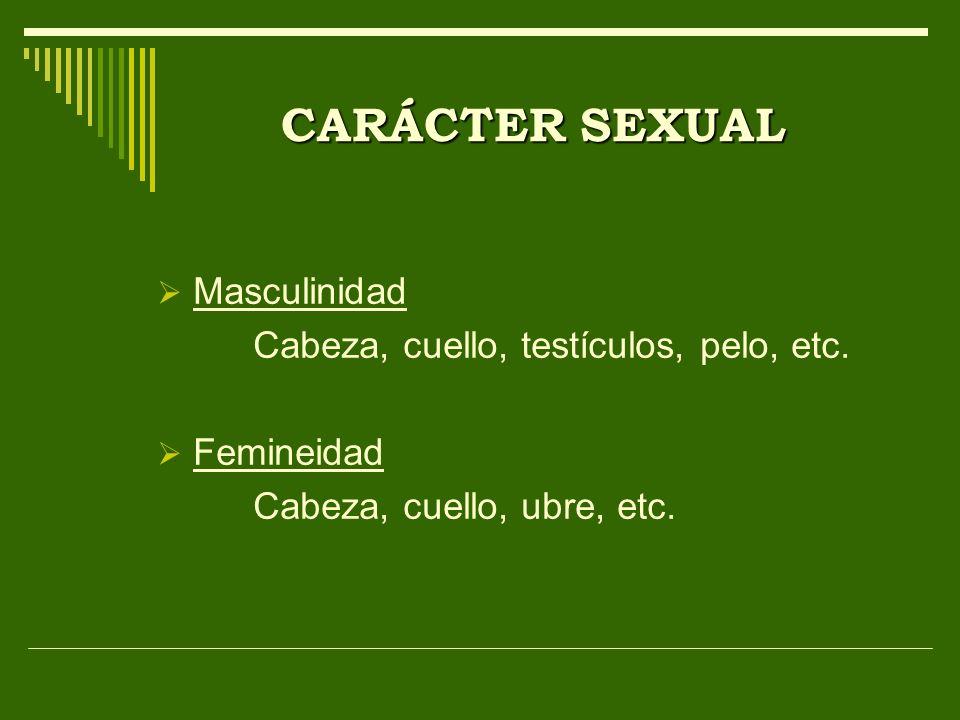 CARÁCTER SEXUAL Masculinidad Cabeza, cuello, testículos, pelo, etc. Femineidad Cabeza, cuello, ubre, etc.