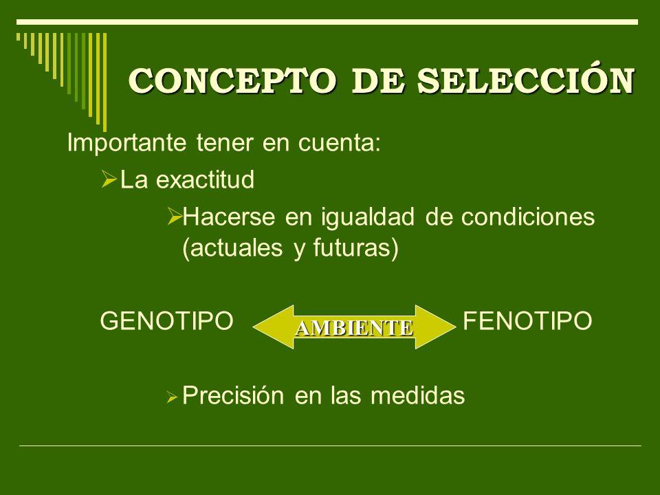 CONCEPTO DE SELECCIÓN Importante tener en cuenta: La exactitud Hacerse en igualdad de condiciones (actuales y futuras) GENOTIPOFENOTIPO Precisión en l