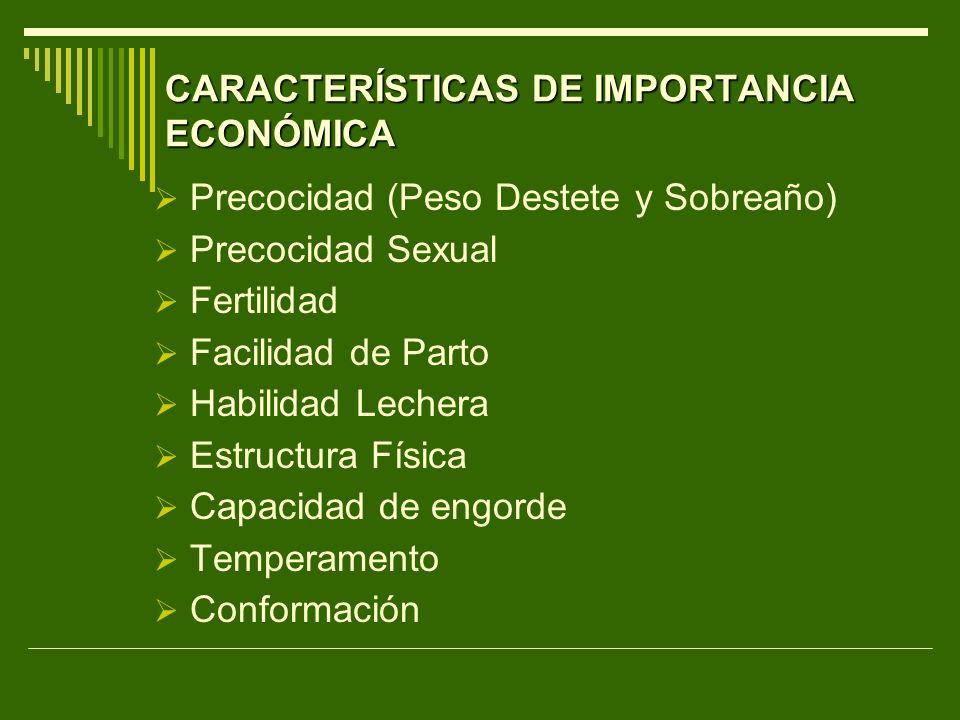 CARACTERÍSTICAS DE IMPORTANCIA ECONÓMICA Precocidad (Peso Destete y Sobreaño) Precocidad Sexual Fertilidad Facilidad de Parto Habilidad Lechera Estruc