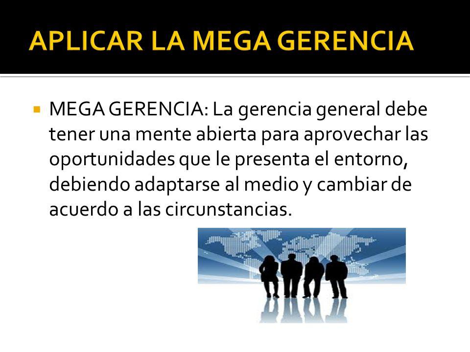 MEGA GERENCIA: La gerencia general debe tener una mente abierta para aprovechar las oportunidades que le presenta el entorno, debiendo adaptarse al me