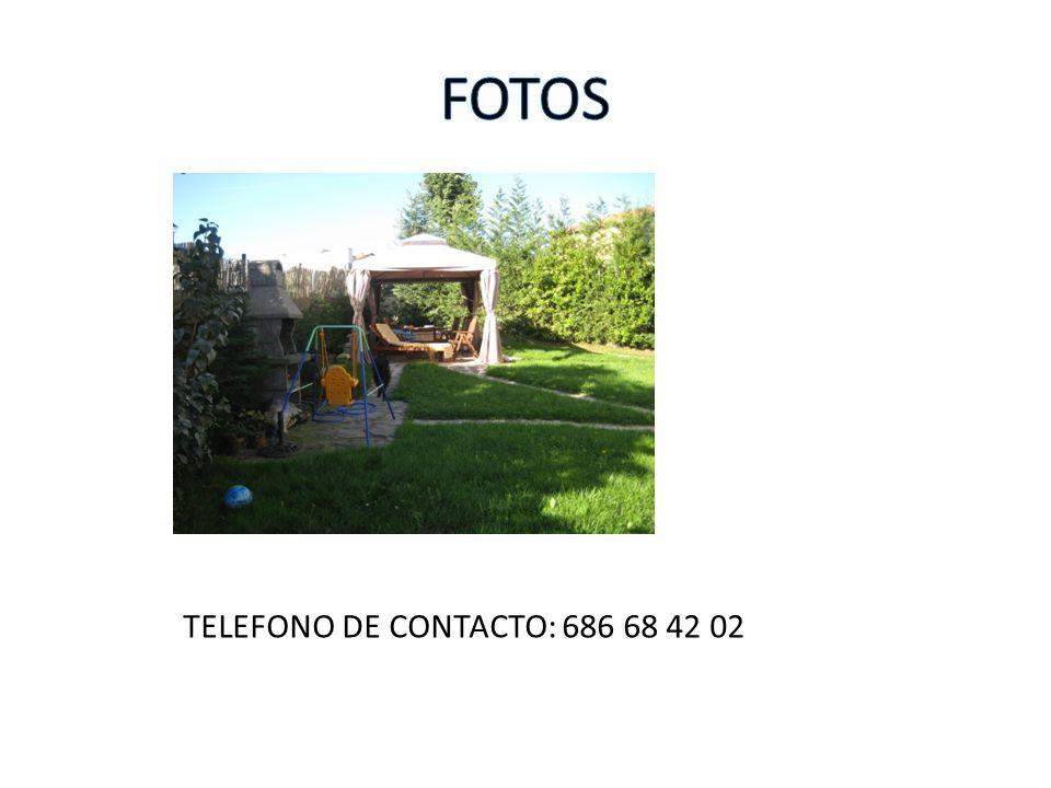 TELEFONO DE CONTACTO: 686 68 42 02