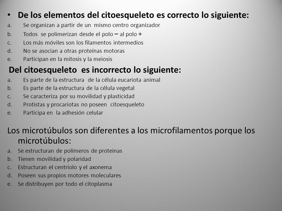 De los elementos del citoesqueleto es correcto lo siguiente: a.Se organizan a partir de un mismo centro organizador b.Todos se polimerizan desde el po