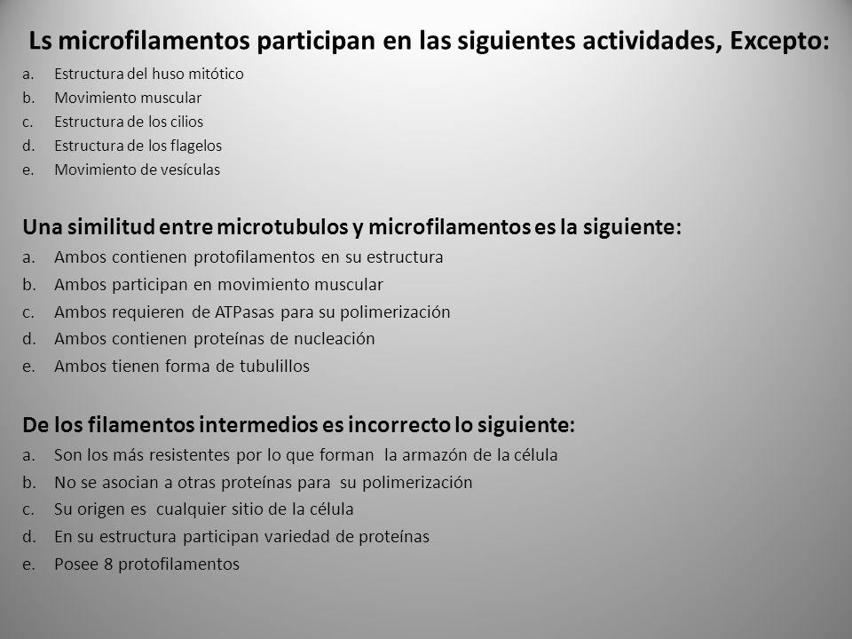 Ls microfilamentos participan en las siguientes actividades, Excepto: a.Estructura del huso mitótico b.Movimiento muscular c.Estructura de los cilios