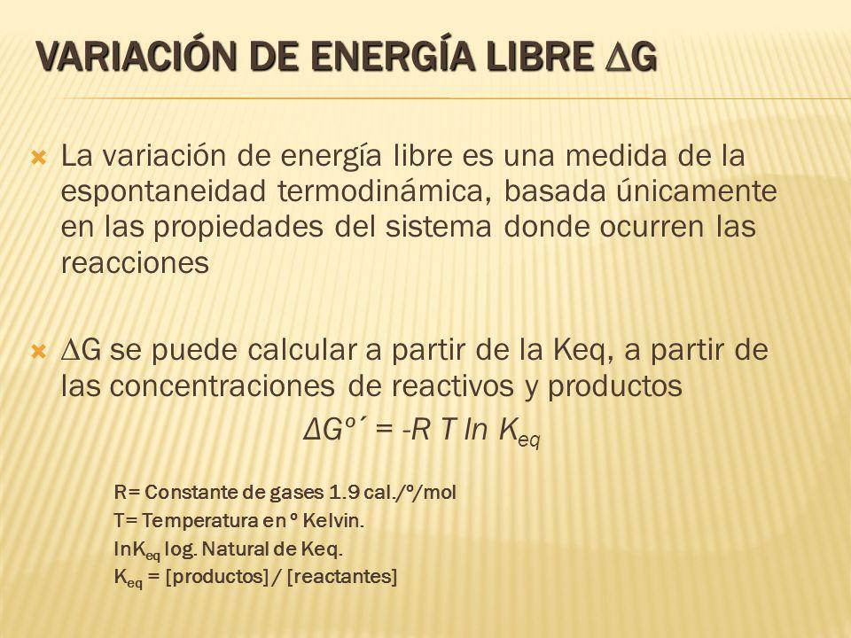 VARIACIÓN DE ENERGÍA LIBRE G La variación de energía libre es una medida de la espontaneidad termodinámica, basada únicamente en las propiedades del s