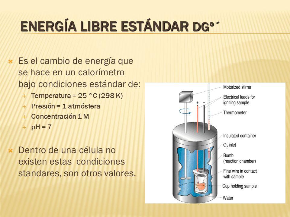 ENERGÍA LIBRE ESTÁNDAR DGº´ Es el cambio de energía que se hace en un calorímetro bajo condiciones estándar de: Temperatura = 25 °C (298 K) Presión =