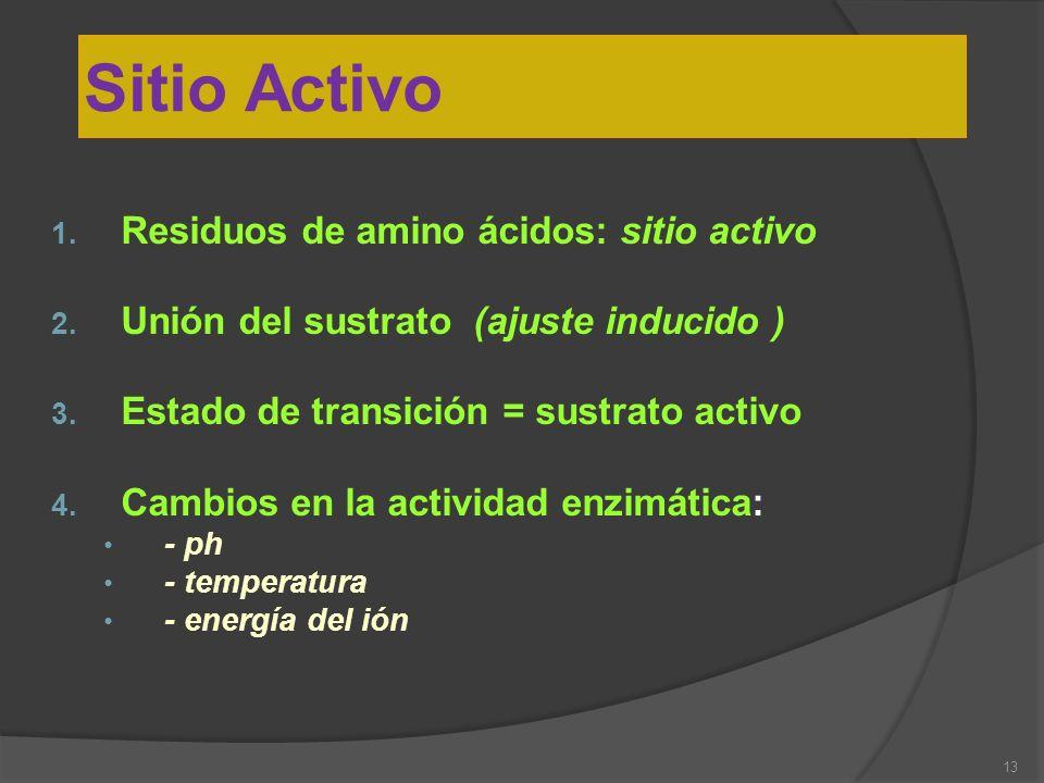 13 Sitio Activo 1. Residuos de amino ácidos: sitio activo 2. Unión del sustrato (ajuste inducido ) 3. Estado de transición = sustrato activo 4. Cambio