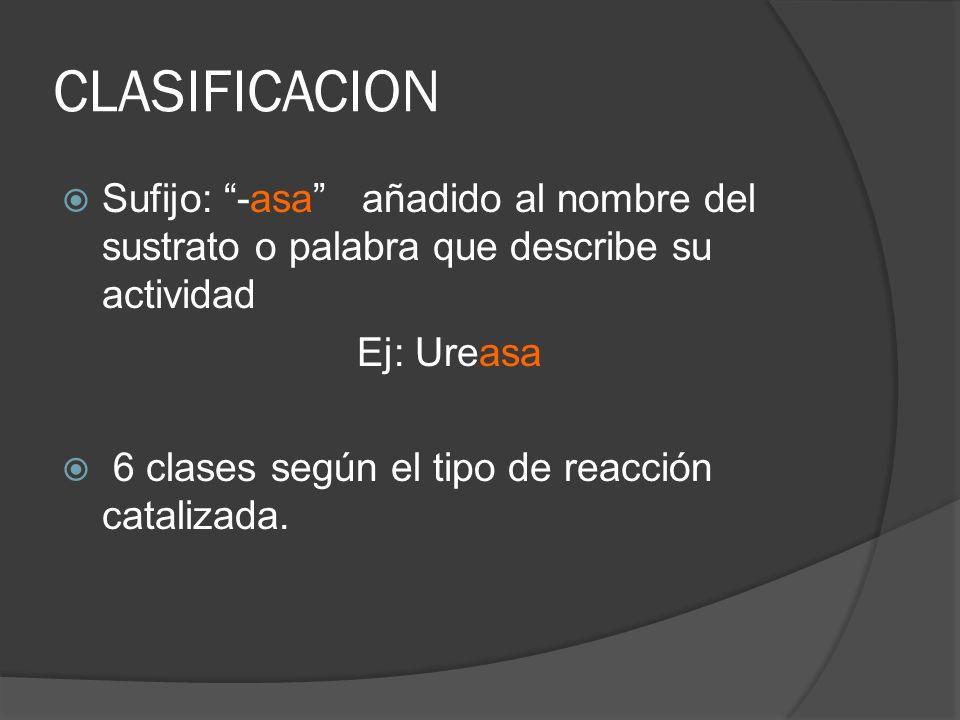 CLASIFICACION Sufijo: -asa añadido al nombre del sustrato o palabra que describe su actividad Ej: Ureasa 6 clases según el tipo de reacción catalizada