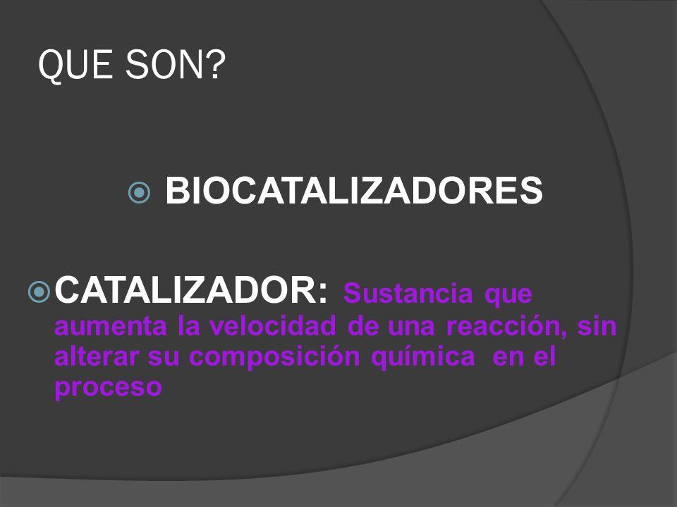 QUE SON? BIOCATALIZADORES CATALIZADOR: Sustancia que aumenta la velocidad de una reacción, sin alterar su composición química en el proceso