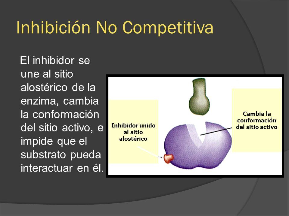 Inhibición No Competitiva El inhibidor se une al sitio alostérico de la enzima, cambia la conformación del sitio activo, e impide que el substrato pue