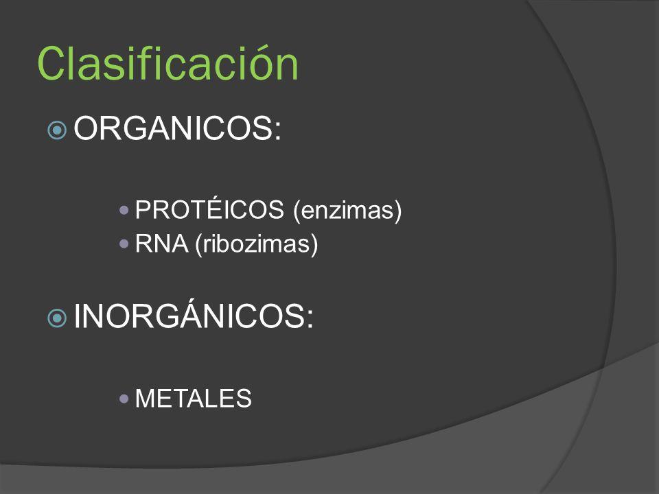 Clasificación ORGANICOS: PROTÉICOS (enzimas) RNA (ribozimas) INORGÁNICOS: METALES
