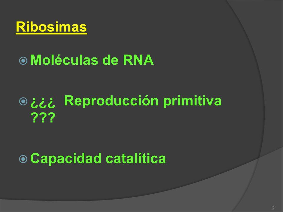 31 Ribosimas Moléculas de RNA ¿¿¿ Reproducción primitiva ??? Capacidad catalítica