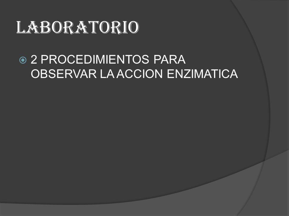 LABORATORIO 2 PROCEDIMIENTOS PARA OBSERVAR LA ACCION ENZIMATICA