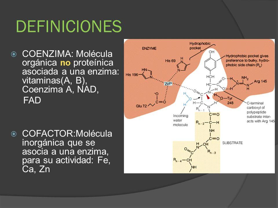 DEFINICIONES COENZIMA: Molécula orgánica no proteínica asociada a una enzima: vitaminas(A, B), Coenzima A, NAD, FAD COFACTOR:Molécula inorgánica que s