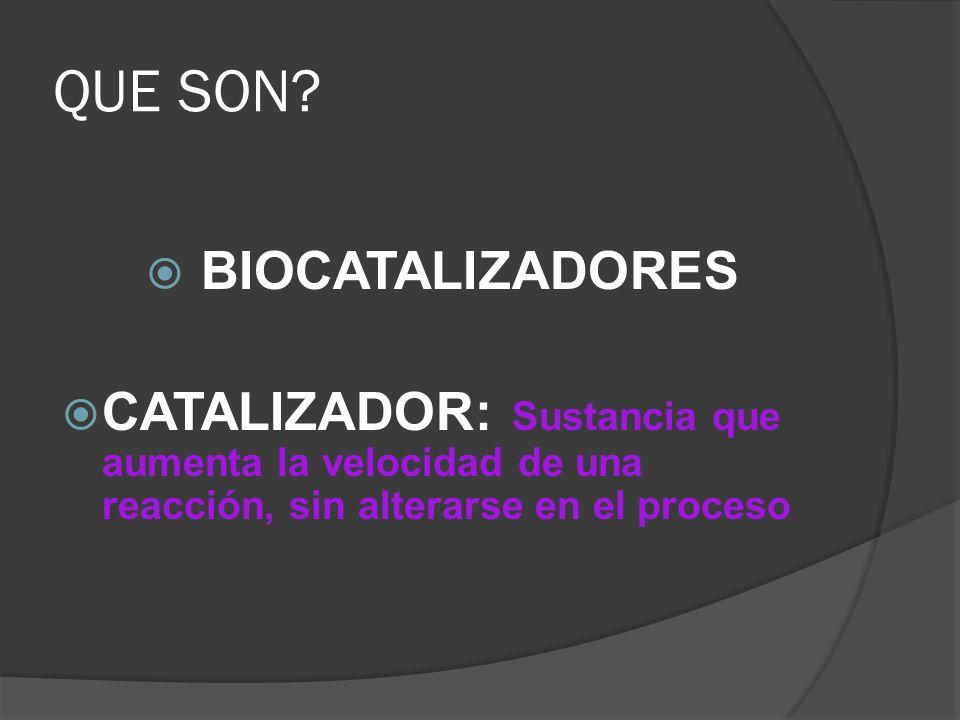 QUE SON? BIOCATALIZADORES CATALIZADOR: Sustancia que aumenta la velocidad de una reacción, sin alterarse en el proceso