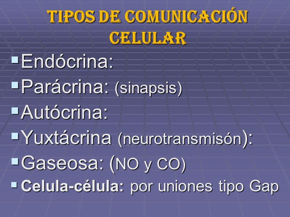 Tipos de comunicación celular Endócrina: Endócrina: Parácrina: (sinapsis) Parácrina: (sinapsis) Autócrina: Autócrina: Yuxtácrina (neurotransmisón ): Yuxtácrina (neurotransmisón ): Gaseosa: ( NO y CO) Gaseosa: ( NO y CO) Celula-célula: por uniones tipo Gap Celula-célula: por uniones tipo Gap