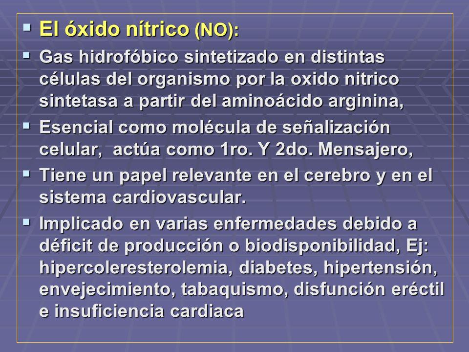 El óxido nítrico (NO): El óxido nítrico (NO): Gas hidrofóbico sintetizado en distintas células del organismo por la oxido nitrico sintetasa a partir del aminoácido arginina, Gas hidrofóbico sintetizado en distintas células del organismo por la oxido nitrico sintetasa a partir del aminoácido arginina, Esencial como molécula de señalización celular, actúa como 1ro.