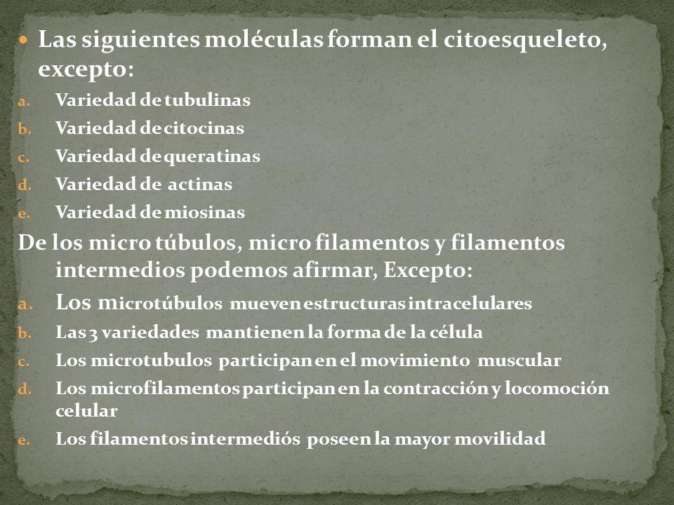 Las siguientes moléculas forman el citoesqueleto, excepto: a. Variedad de tubulinas b. Variedad de citocinas c. Variedad de queratinas d. Variedad de