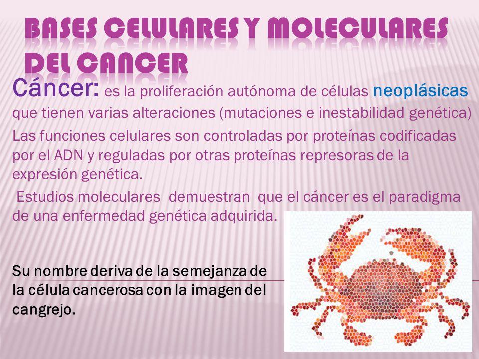 Cáncer: es la proliferación autónoma de células neoplásicas que tienen varias alteraciones (mutaciones e inestabilidad genética) Las funciones celular