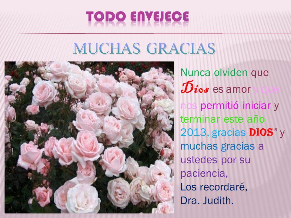 Nunca olviden que Dios es amor y que nos permitió iniciar y terminar este año 2013, gracias DIOS y muchas gracias a ustedes por su paciencia, Los reco