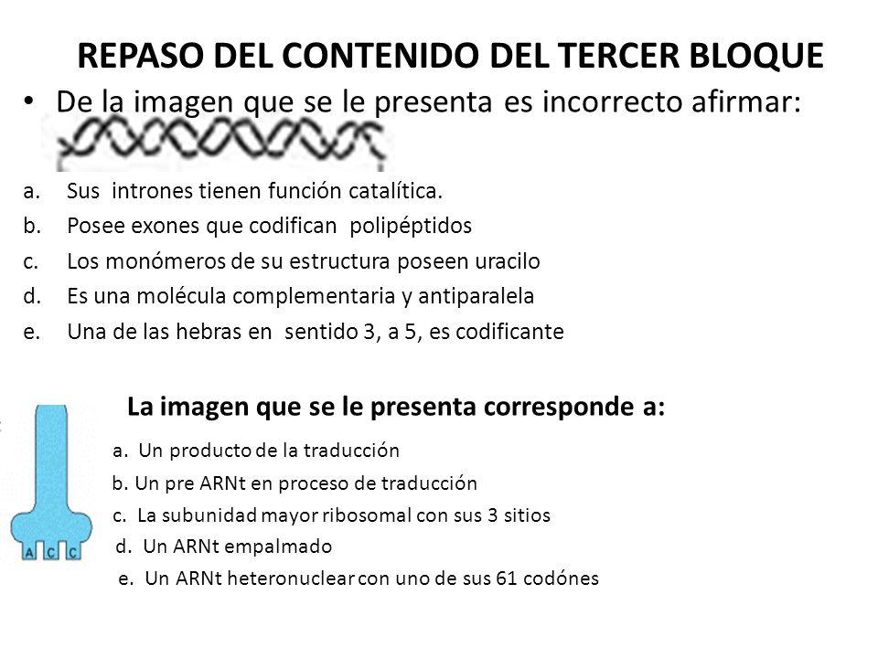 La imagen que se le presenta corresponde a:a.a. Un producto de la traducción b.