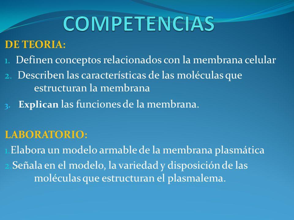 DE TEORIA: 1. Definen conceptos relacionados con la membrana celular 2. Describen las características de las moléculas que estructuran la membrana 3.