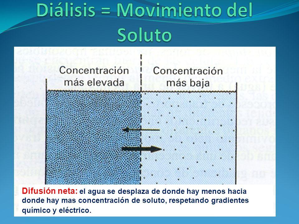 Difusión neta: el agua se desplaza de donde hay menos hacia donde hay mas concentración de soluto, respetando gradientes químico y eléctrico.