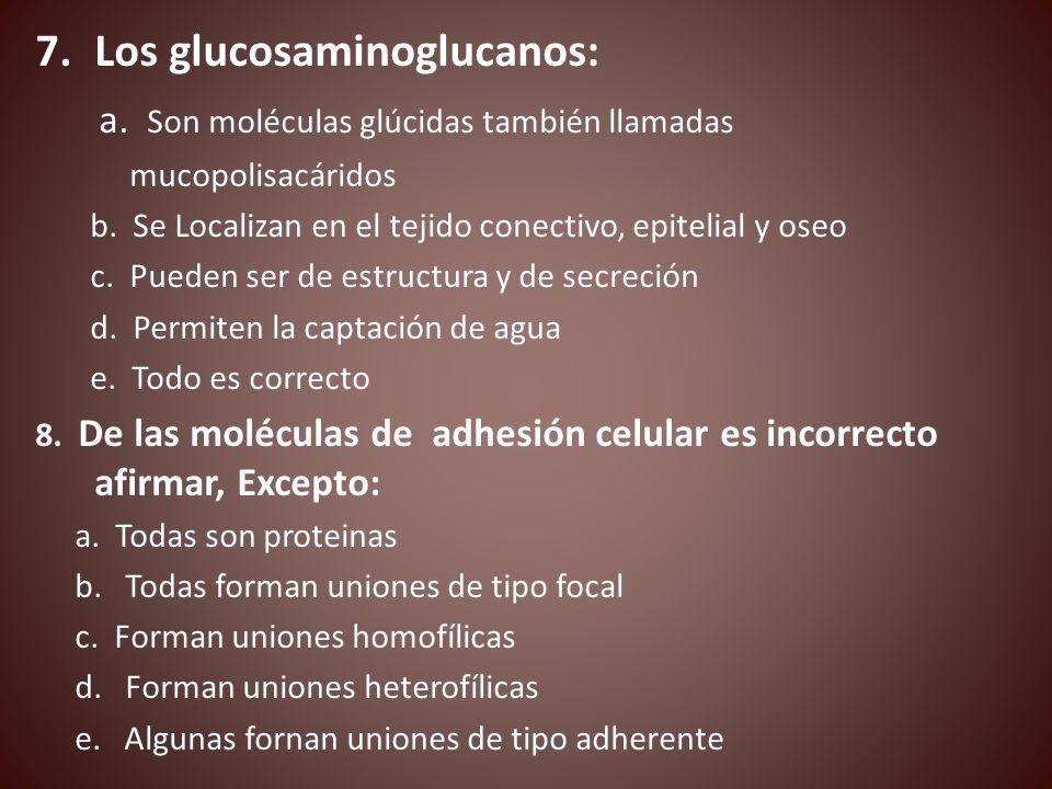 7.Los glucosaminoglucanos: a. Son moléculas glúcidas también llamadas mucopolisacáridos b. Se Localizan en el tejido conectivo, epitelial y oseo c. Pu