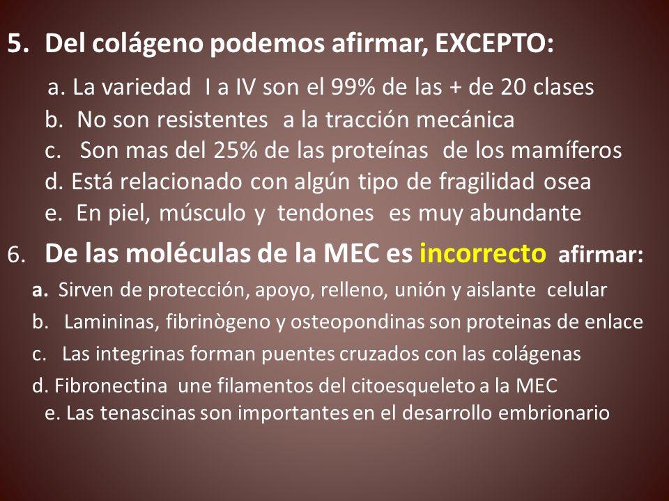 5.Del colágeno podemos afirmar, EXCEPTO: a. La variedad I a IV son el 99% de las + de 20 clases b. No son resistentes a la tracción mecánica c. Son ma