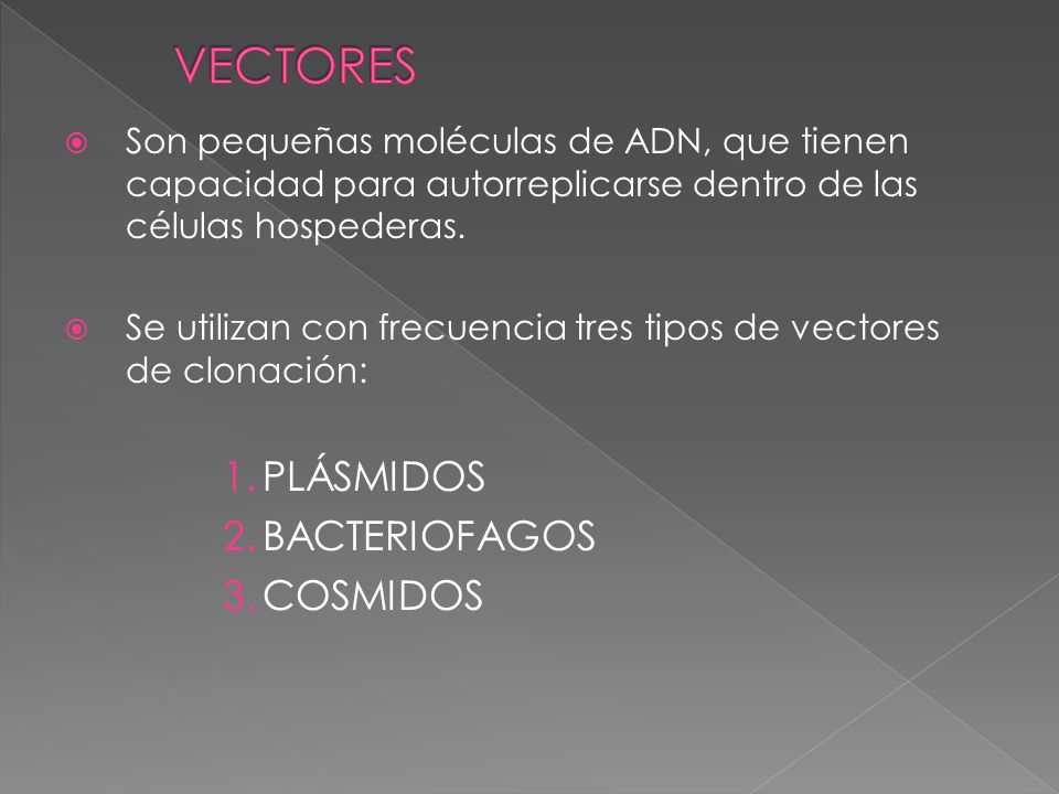 Los plásmidos son secuencias de ADN de bacterias, extracromosómicas que tienen la capacidad de reproducirse autónomamente y, algunos, de pasar de una célula a otra.
