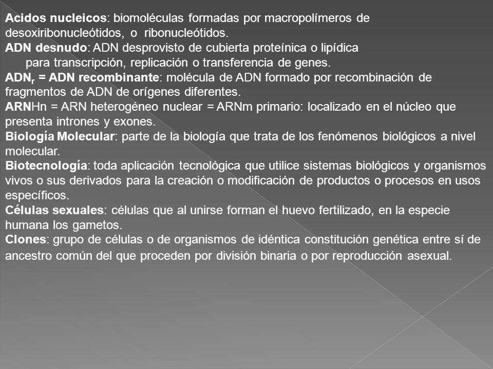 Acidos nucleicos: biomoléculas formadas por macropolímeros de desoxiribonucleótidos, o ribonucleótidos. ADN desnudo: ADN desprovisto de cubierta prote