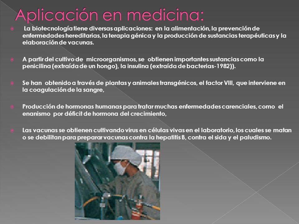 La biotecnología tiene diversas aplicaciones: en la alimentación, la prevención de enfermedades hereditarias, la terapia génica y la producción de sus