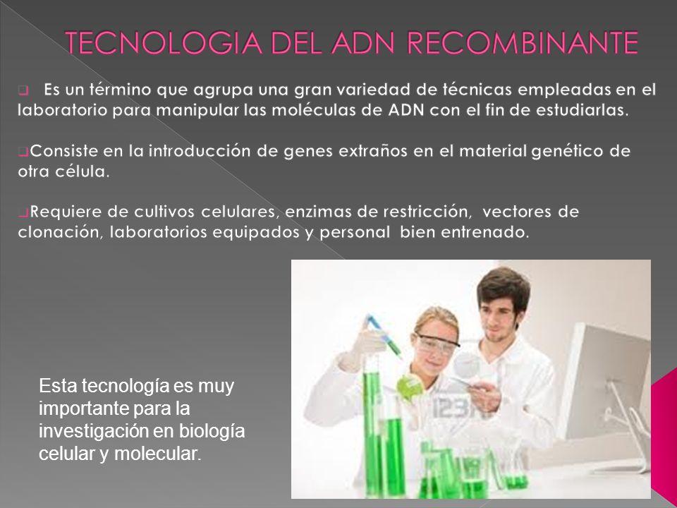 Esta tecnología es muy importante para la investigación en biología celular y molecular.
