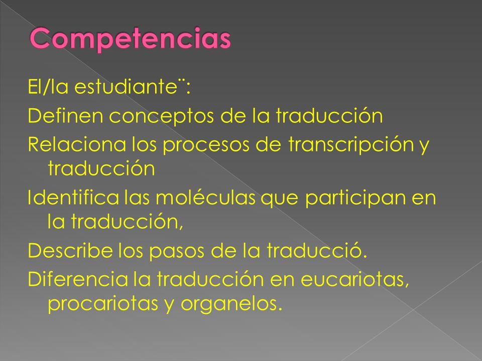 El/la estudiante¨: Definen conceptos de la traducción Relaciona los procesos de transcripción y traducción Identifica las moléculas que participan en
