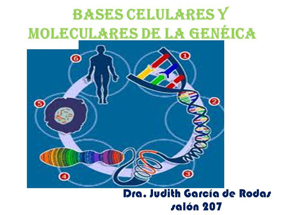Bases celulares y moleculares de la genéica Dra. Judith García de Rodas salón 207
