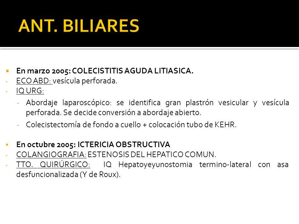 En marzo 2005: COLECISTITIS AGUDA LITIASICA. - ECO ABD: vesícula perforada. - IQ URG: - Abordaje laparoscópico: se identifica gran plastrón vesicular