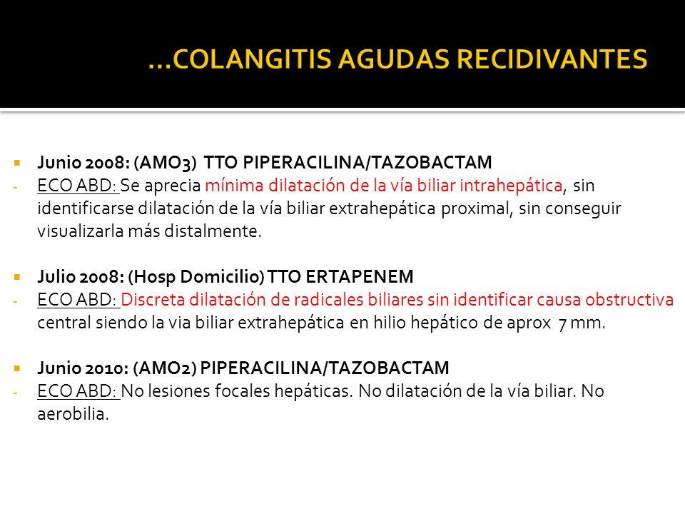 Junio 2008: (AMO3) TTO PIPERACILINA/TAZOBACTAM - ECO ABD: Se aprecia mínima dilatación de la vía biliar intrahepática, sin identificarse dilatación de