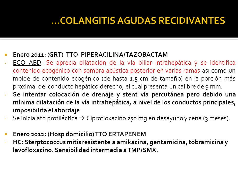 Marzo 2012: (GRT) TTO PIPERACILINA/TAZOBACTAM - ECO ABD: persiste leve dilatación de la vía biliar intrahepática, similar a estudios previos.