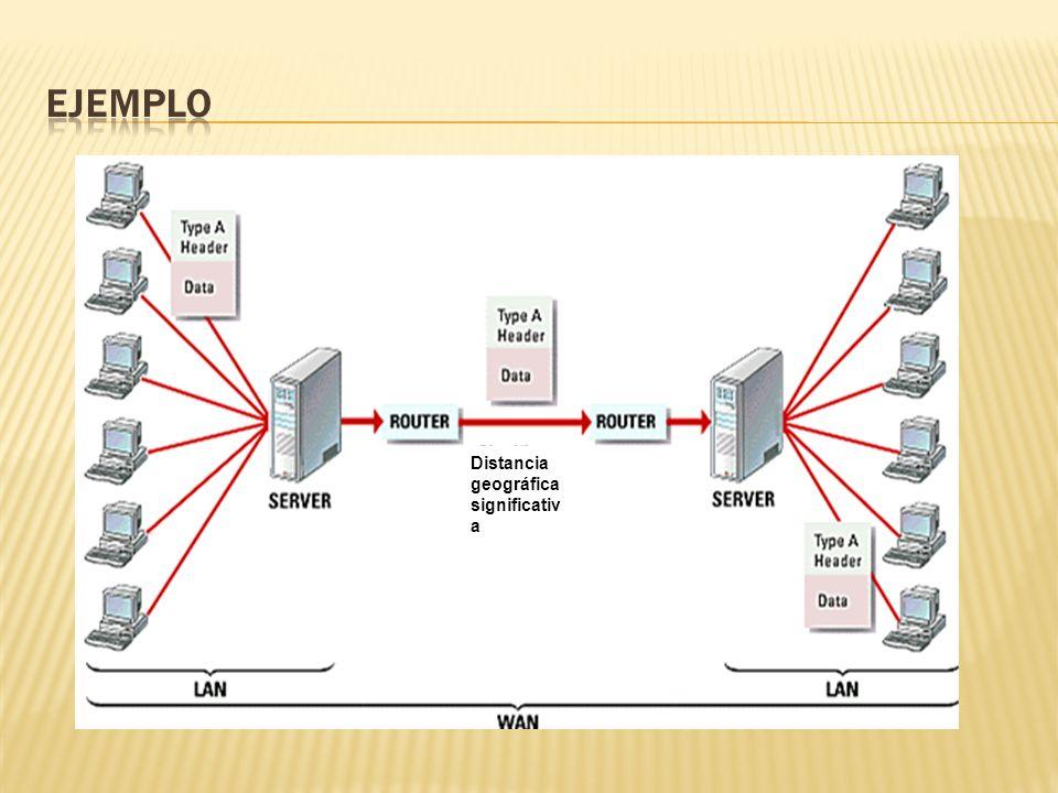 Nodos - computadoras individuales que forman una red.