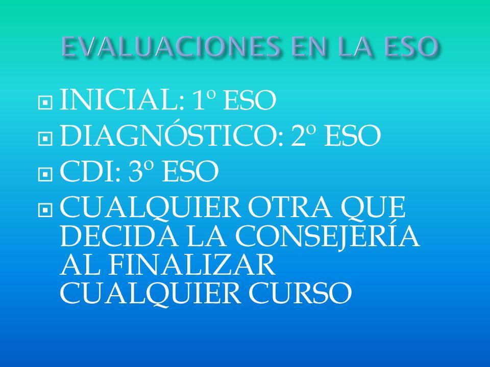 PROFESORES RESPONSABLES DE LA COMUNIDAD INICIAL DIAGNÓSTICO CDI