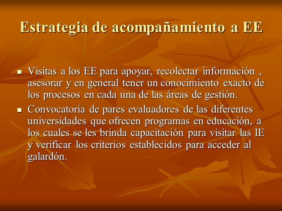 Estrategia de acompañamiento a EE Visitas a los EE para apoyar, recolectar información, asesorar y en general tener un conocimiento exacto de los proc