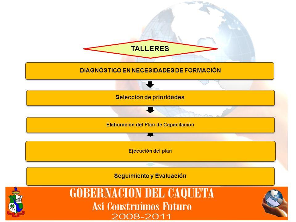 DIAGNÓSTICO EN NECESIDADES DE FORMACIÓN Selección de prioridades Elaboración del Plan de Capacitación Ejecución del plan Seguimiento y Evaluación TALL