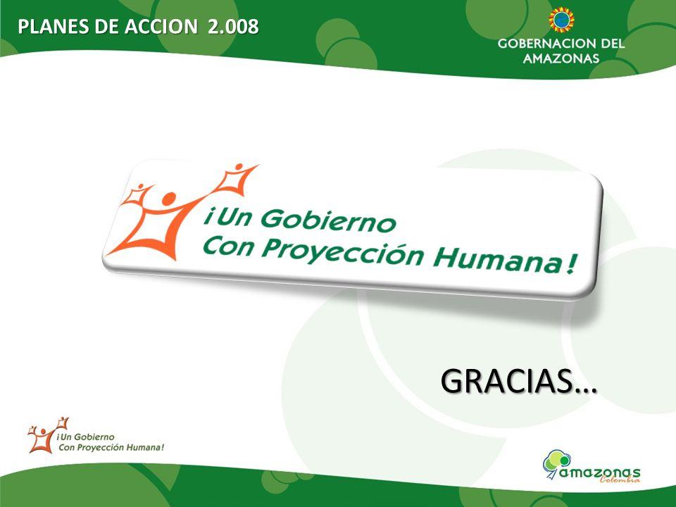 PLANES DE ACCION 2.008 GRACIAS…