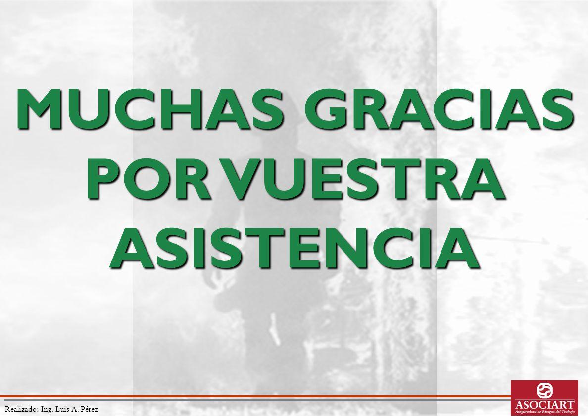 Realizado: Ing. Luis A. Pérez MUCHAS GRACIAS POR VUESTRA ASISTENCIA