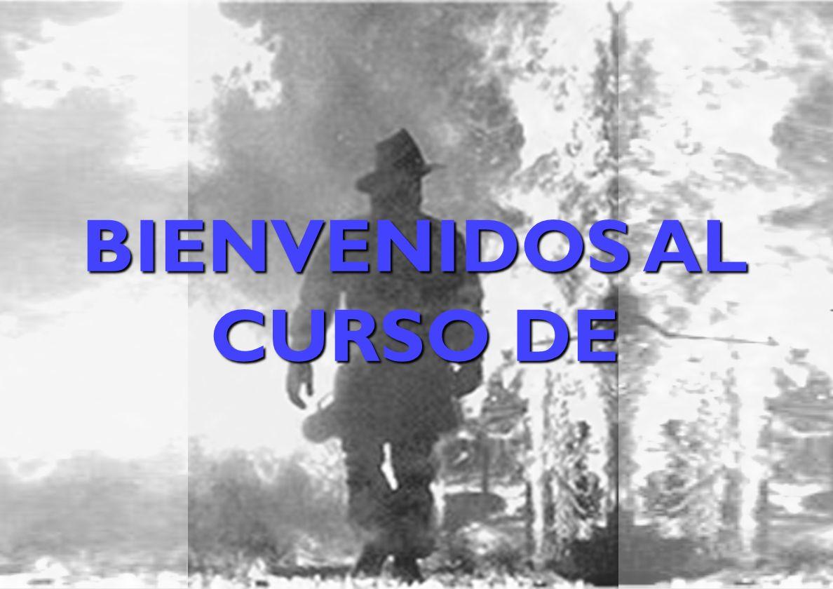 BIENVENIDOS AL CURSO DE