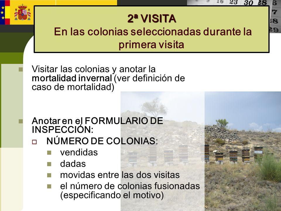 2ª VISITA 2ª VISITA En las colonias seleccionadas durante la primera visita Visitar las colonias y anotar la mortalidad invernal (ver definición de ca