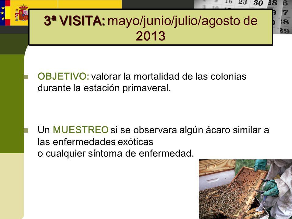 OBJETIVO: valorar la mortalidad de las colonias durante la estación primaveral. Un MUESTREO si se observara algún ácaro similar a las enfermedades exó